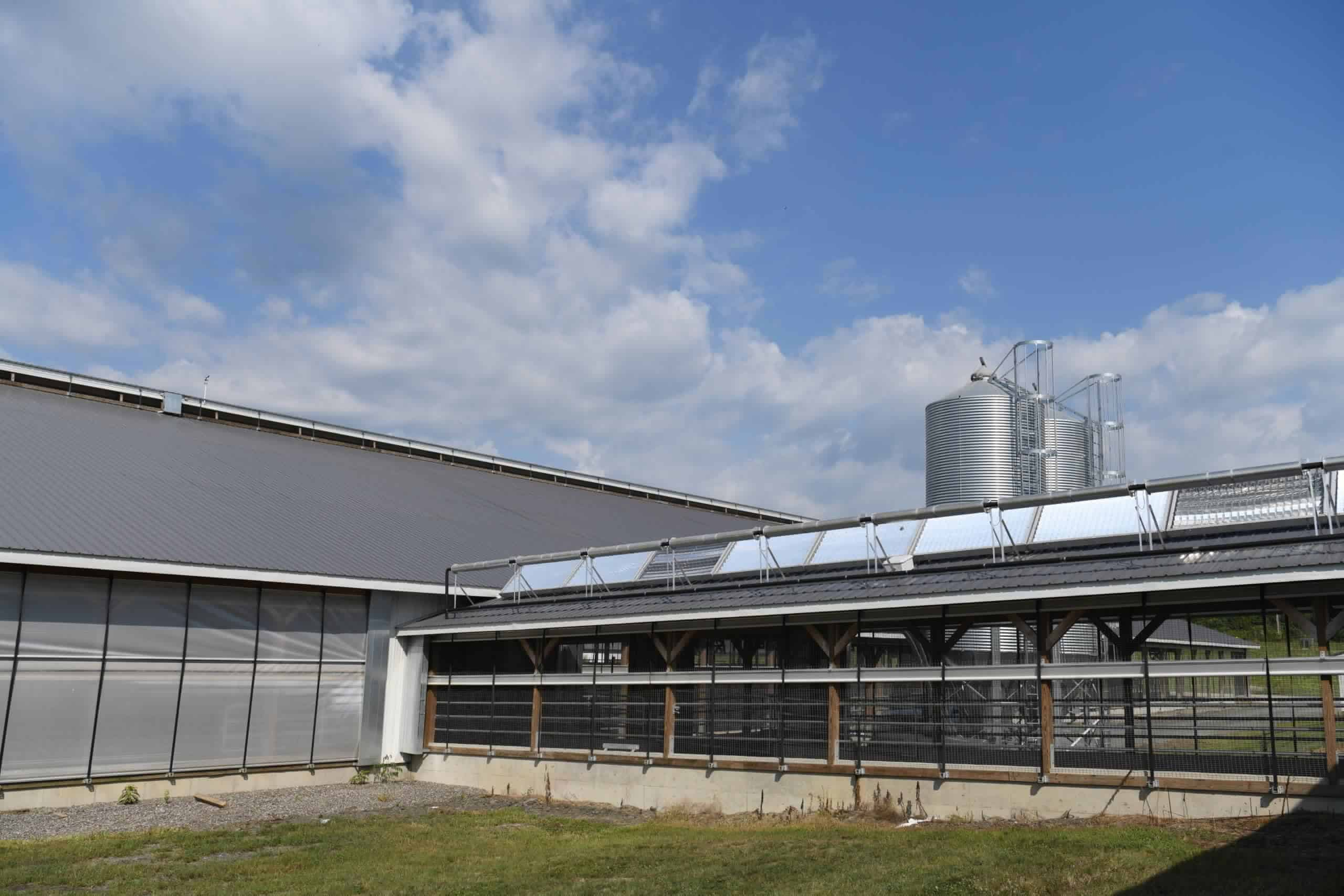 Using Solar to Displace Fossil Fuels for Process Heat in Industrial Facilities